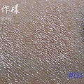 LUNASOL 2010絕景淨化-9.jpg