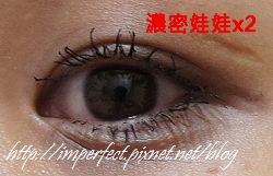 nEO_IMG_DSC06264.jpg