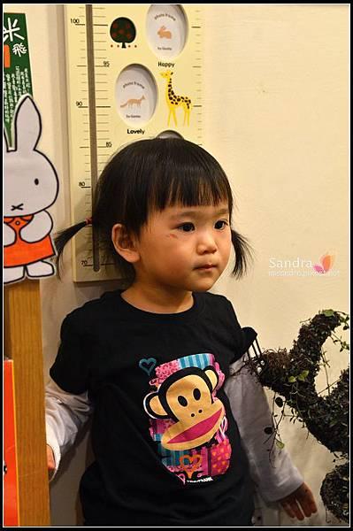 201105-花栗鼠 (4)