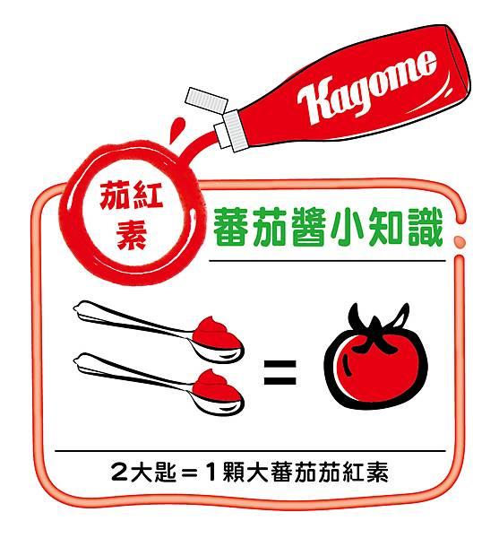 蕃茄小常識圖.jpg