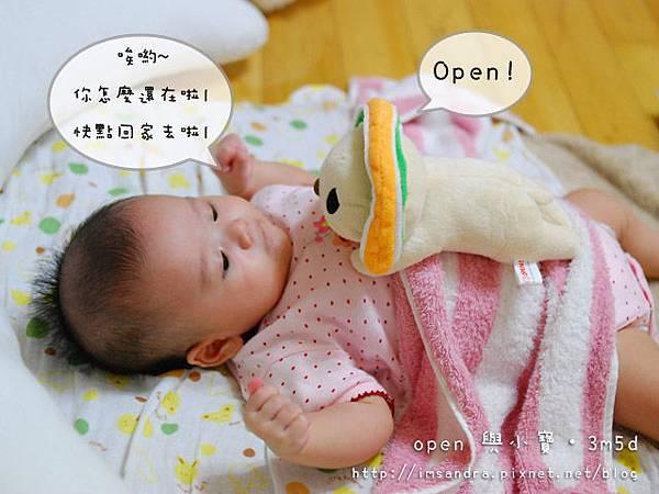 OPEN11.jpg
