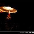 20080308‧台南黑輪碳烤_003.jpg