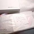 20090206-Agio06.jpg