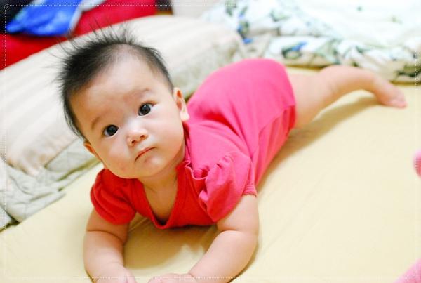小寶玩摔角