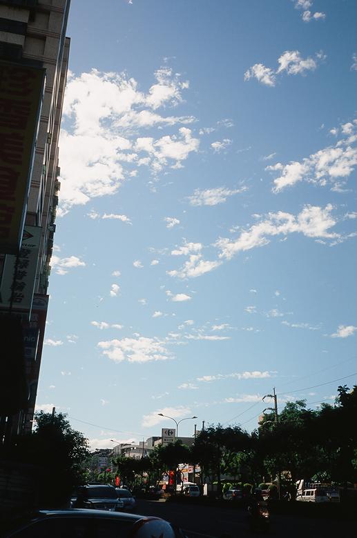 天空、路樹,顏色都好美啊~