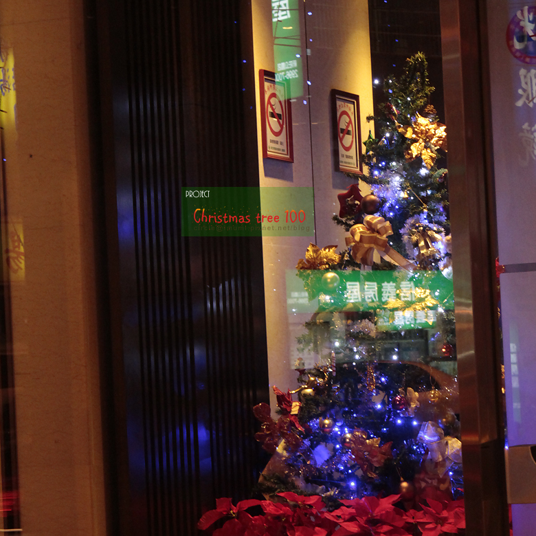 新莊客旅內聖誕樹