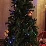 11.鴻金寶內聖誕樹(門口)