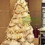 12.麻吉影城,有四棵聖誕樹!其一