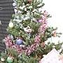 24.某通訊行聖誕樹,好雜亂……