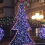 101年,用第101棵聖誕樹,來聊表記念!