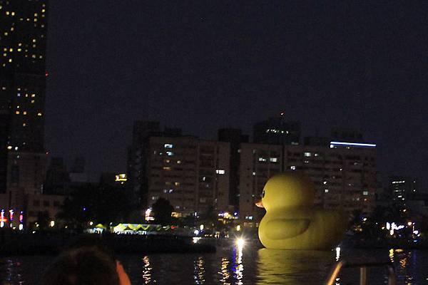 夜晚之鴨,夜鴨!