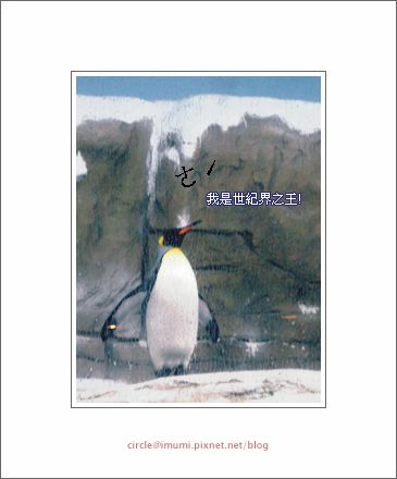 動物園03拷貝.png
