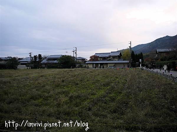 P1370970.jpg