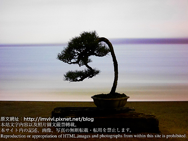 P1310256.png