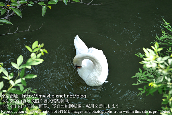 P1400885.png