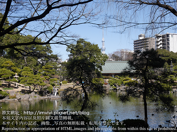P1630305.png