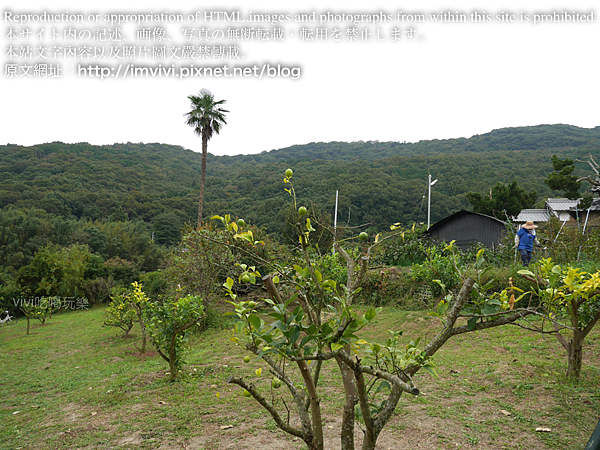 P1540732.png