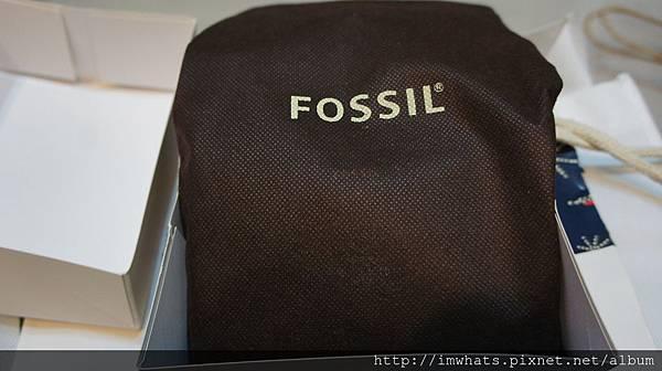 fossilDSC01196.JPG