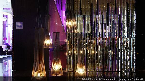 W HOTEL紫艷DSC02940.JPG