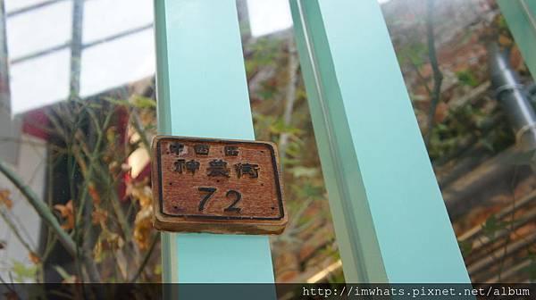 阿朗基公寓DSC02802.JPG