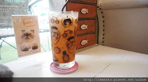 caturday cat cafe泰式奶茶.JPG