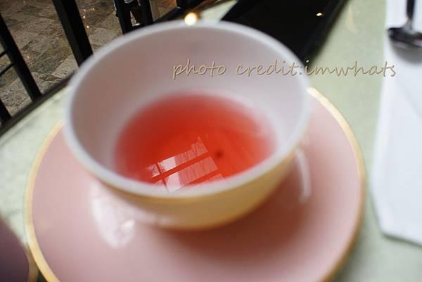 君悅茶苑DSC01493.JPG