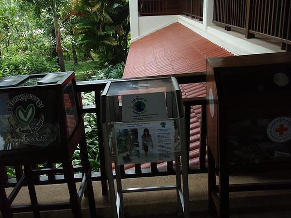 飯店門口的兒童醫院捐獻箱