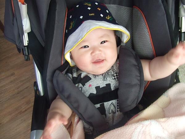 女王陛下只能坐在嬰兒車裡 但還是很開心