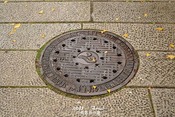 景福宮旁人行道上排水孔蓋