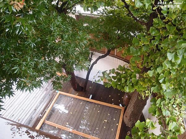 從房間陽台看出去的景色