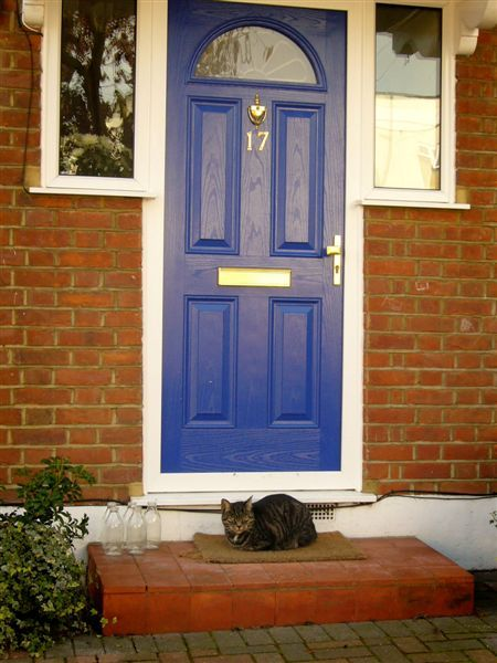 DOOR014.jpg