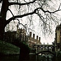 CAMBRIDGE_007.jpg