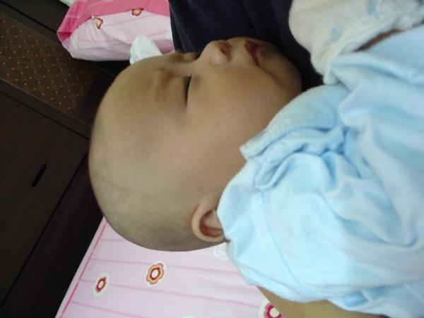 4/11 '06 Schnappi在媽媽懷中熟睡