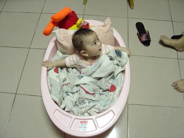 20060826 夏皮在外婆家的樣子