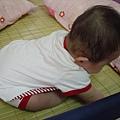 2006-08-30 schnappi會稍微坐一點點了