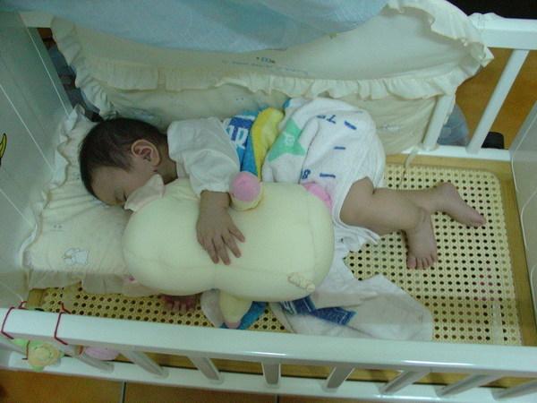 最進睡覺比較不好睡,抱豬睡會好一點