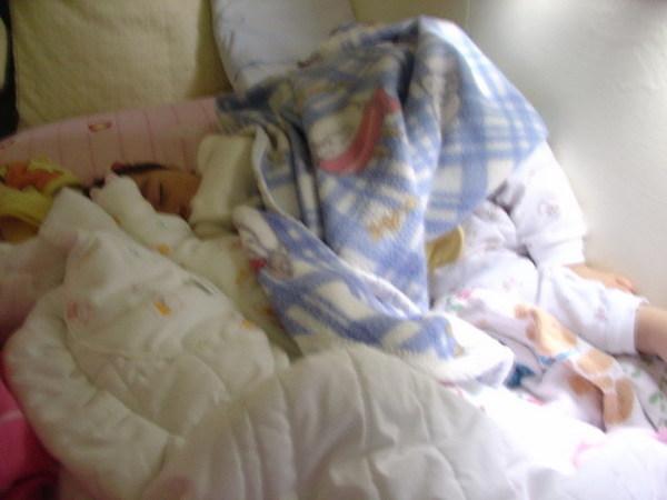 還在熟睡的蝦餅2