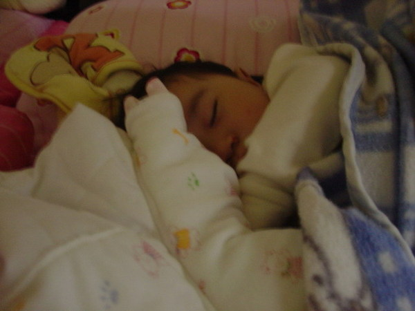 還在熟睡的蝦餅4