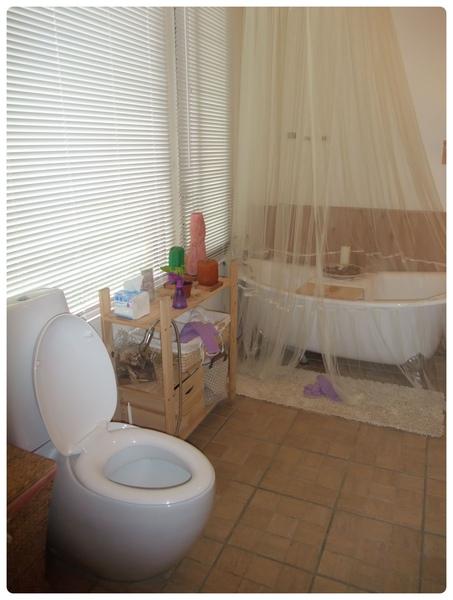 超優雅的廁所