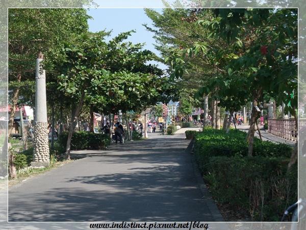 行道樹.JPG