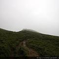 開始起霧的夢幻山峰