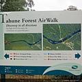 步道也挺多的但是我們想先看完AIRWALK