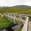 途中還有小橋 這邊沿路都是WOMBAT得便便..但是沒看到半個影
