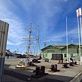 又回到碼頭邊 其實SHED就是貨櫃屋