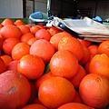 這是柳丁orange 大的咧!