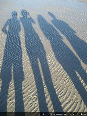 退潮中 沙子的紋路好可愛