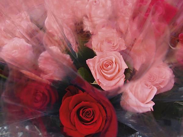 玫瑰花情境2.jpg