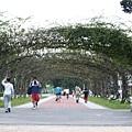 榮星公園_07
