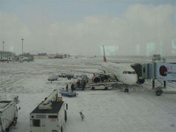 哈爾濱機場1.JPG