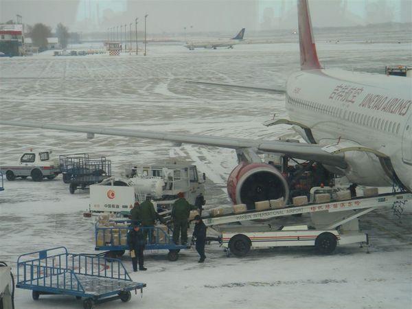 哈爾濱機場2.JPG